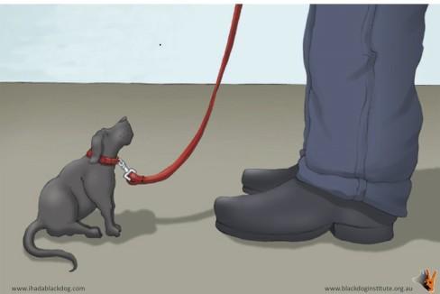 blackdogheeling.jpg